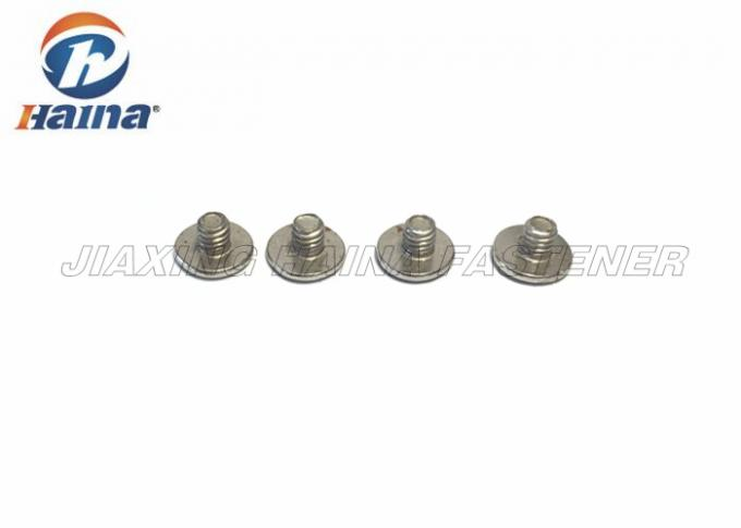 Stainless Steel Countersunk Bolts Mushroom Head Square Neck With Phillip Head Screws
